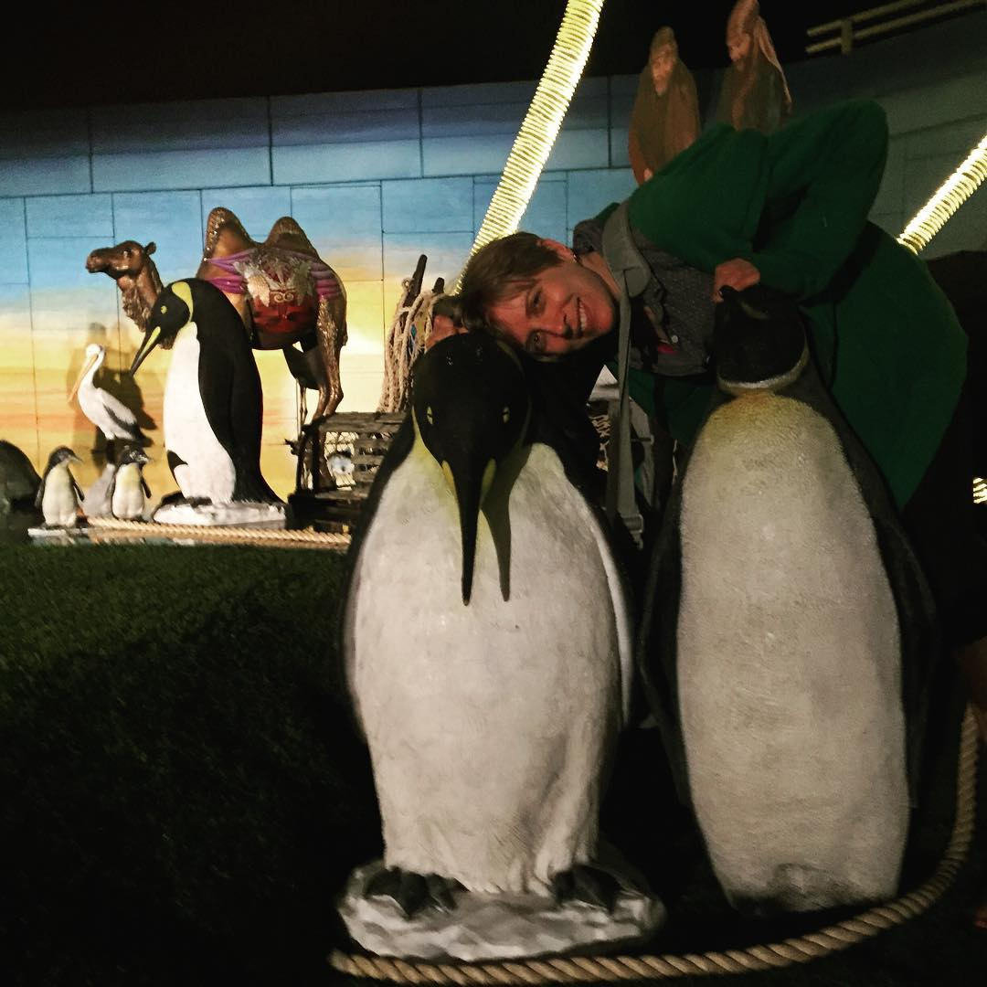debbie-penguins-j