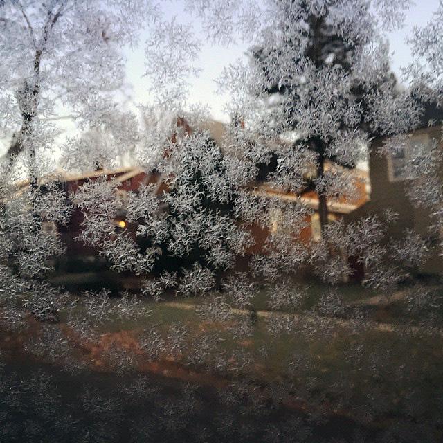 j-picture-snow